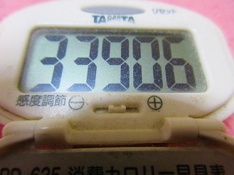 170513-291歩数計(S)