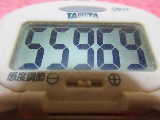 170521-291歩数計(S)