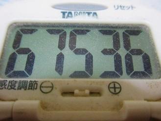 170604-291歩数計(S)
