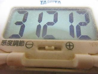 170610-291歩数計(S)