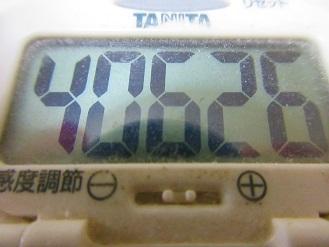 170617-291歩数計(S)