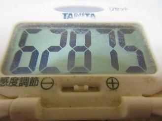 170625-291歩数計(S)