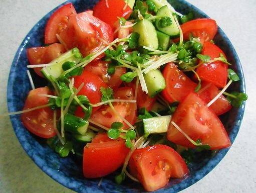 170702-230トマトときゅうりのサラダ(S)