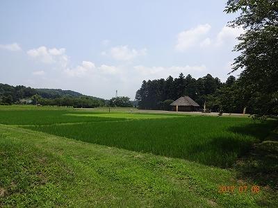 mooka_002.jpg