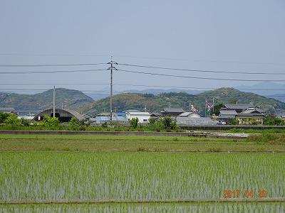 nankoku_001.jpg