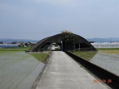 nankoku_002.jpg
