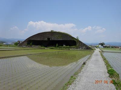 nankoku_012.jpg