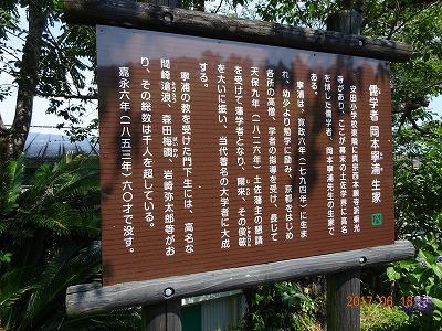 yasuda_009.jpg