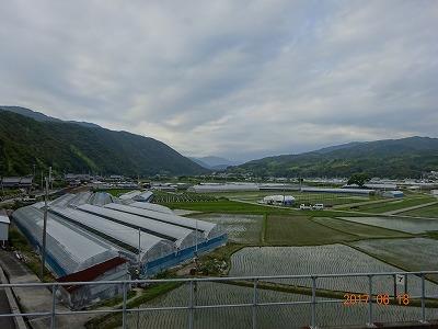 yasuda_020.jpg