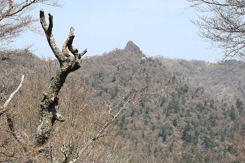 IMG0895JPG鹿納山が見えてきた