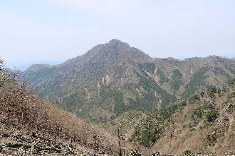 IMG0911JPG明日登る日隠山の東尾根が
