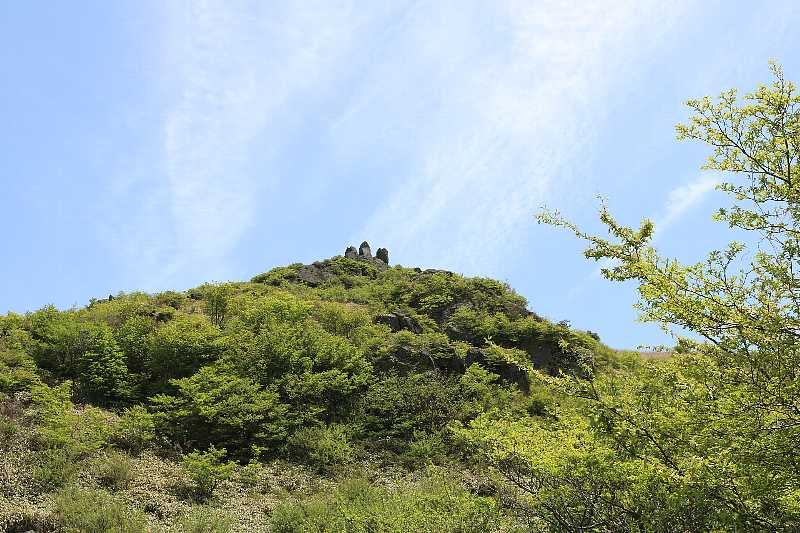 IMG1161JPG新緑の山頂を見る