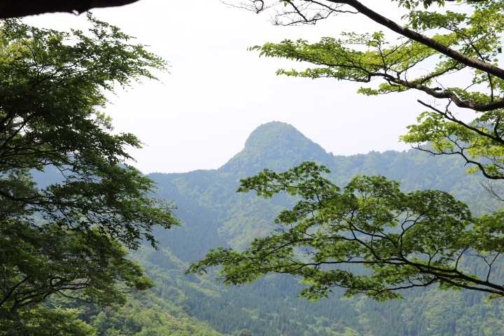 IMG1729JPG樹間に鷹の巣三の岳