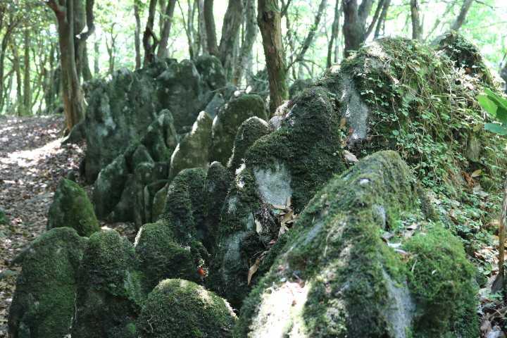 IMG1999JPG岩群の間を歩く