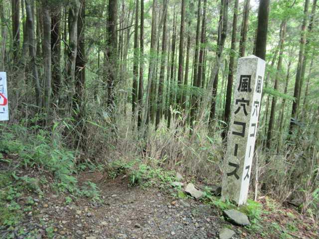 IMG1297JPG林道の風穴コース