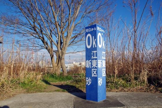 ☆IMGP4353