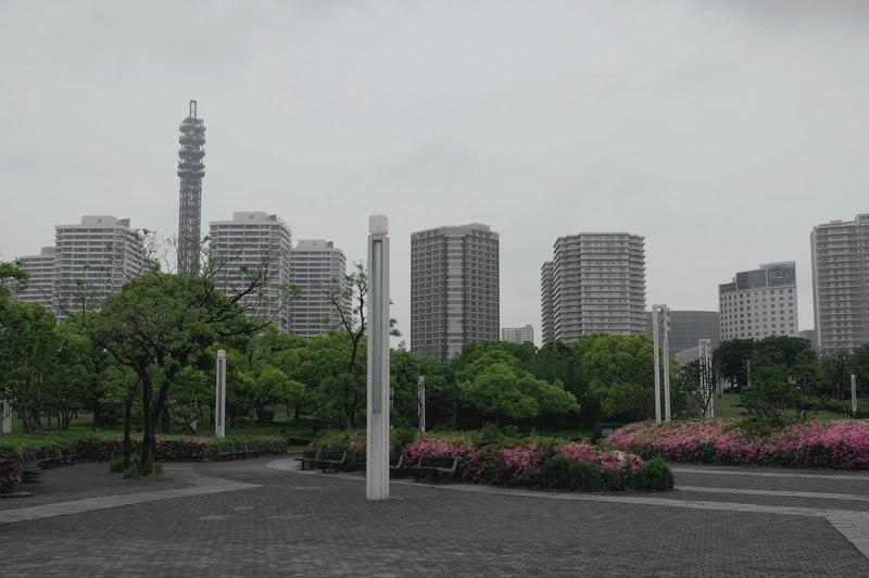 G1020968.jpg