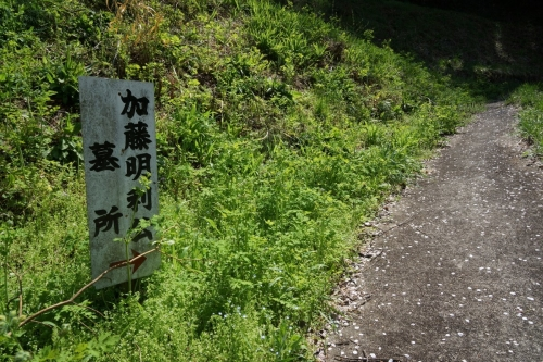 3登り (1200x800)