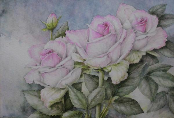 ピンクのバラ 1706