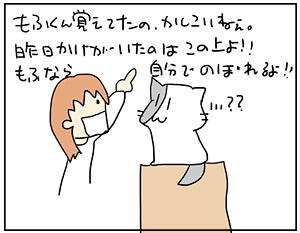 mofu2_2017051520513707e.jpg