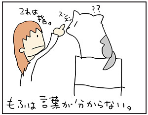 mofu3_20170515205135c29.jpg