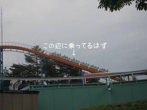 P6255540.jpg