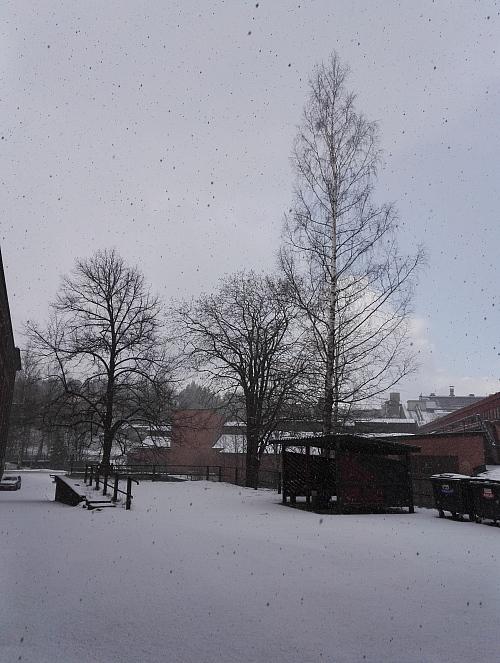 フィンランド南部 2017年 5月10日 雪
