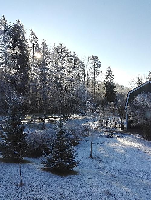 フィンランド 2017年5月11日 雪