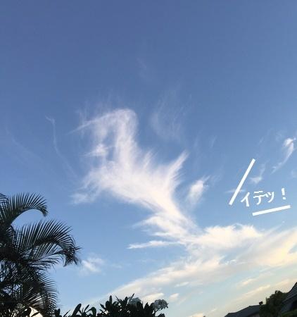 IMG_8938moji.jpg