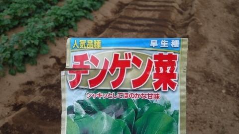 2017.5.2菜園18