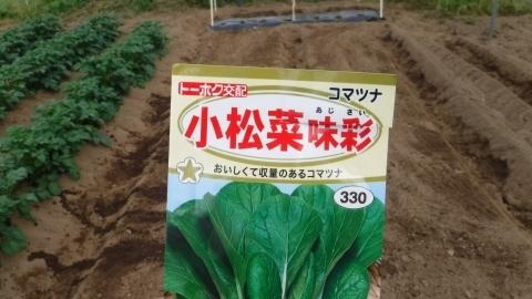 2017.5.2菜園19