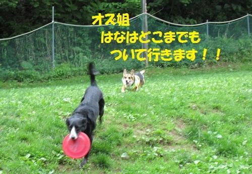 09170616IMG_7604.jpg