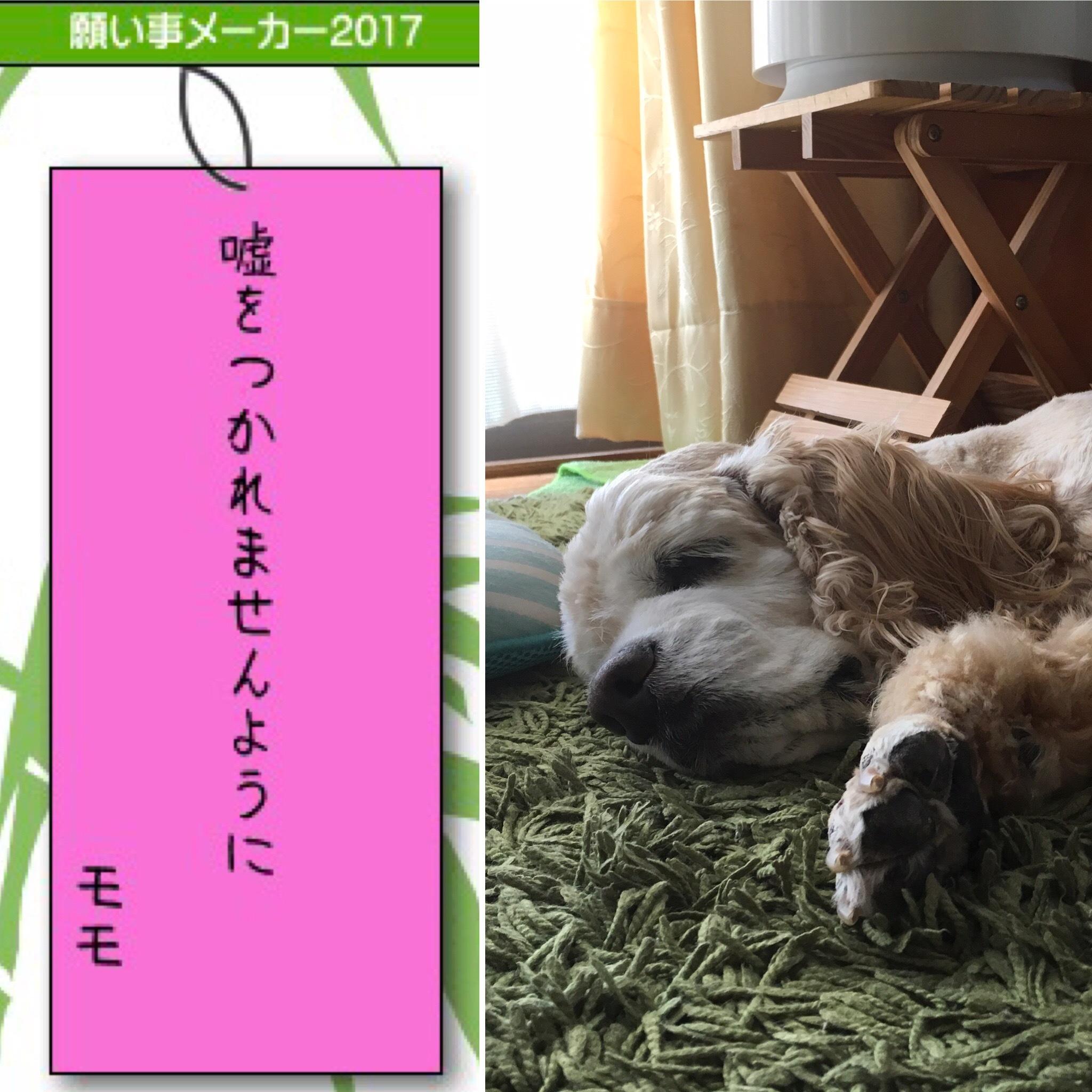 20170707095319116.jpg