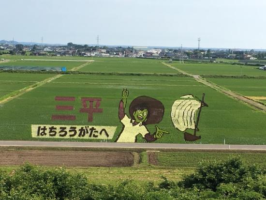 田んぼアート 004