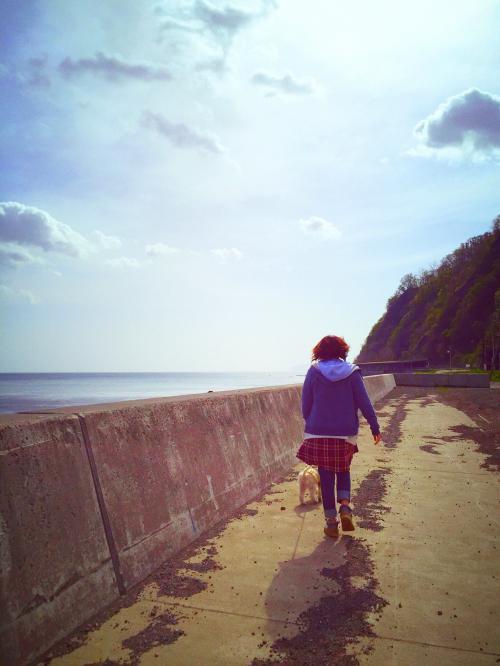 桜と海 13
