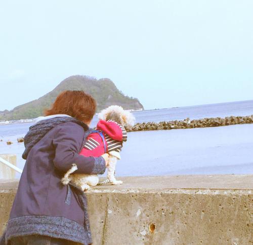 桜と海 14