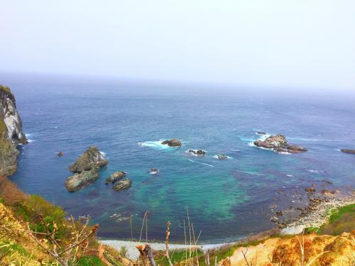 桜と海 15