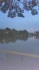 まさかのレマン湖