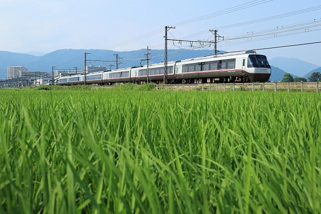 ATSU8572s.jpg
