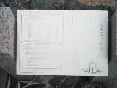 P1330616.jpg