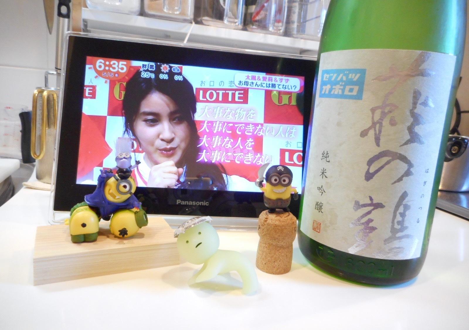 haginotsuru_oboro28by1.jpg