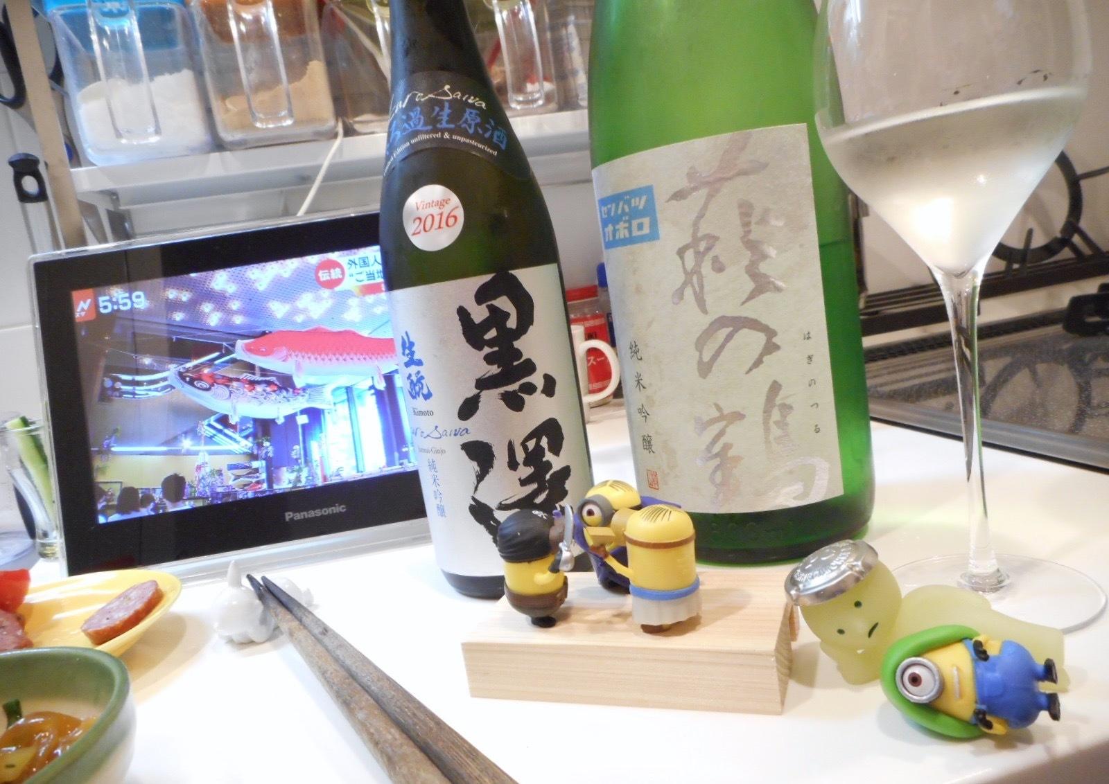 haginotsuru_oboro28by10.jpg