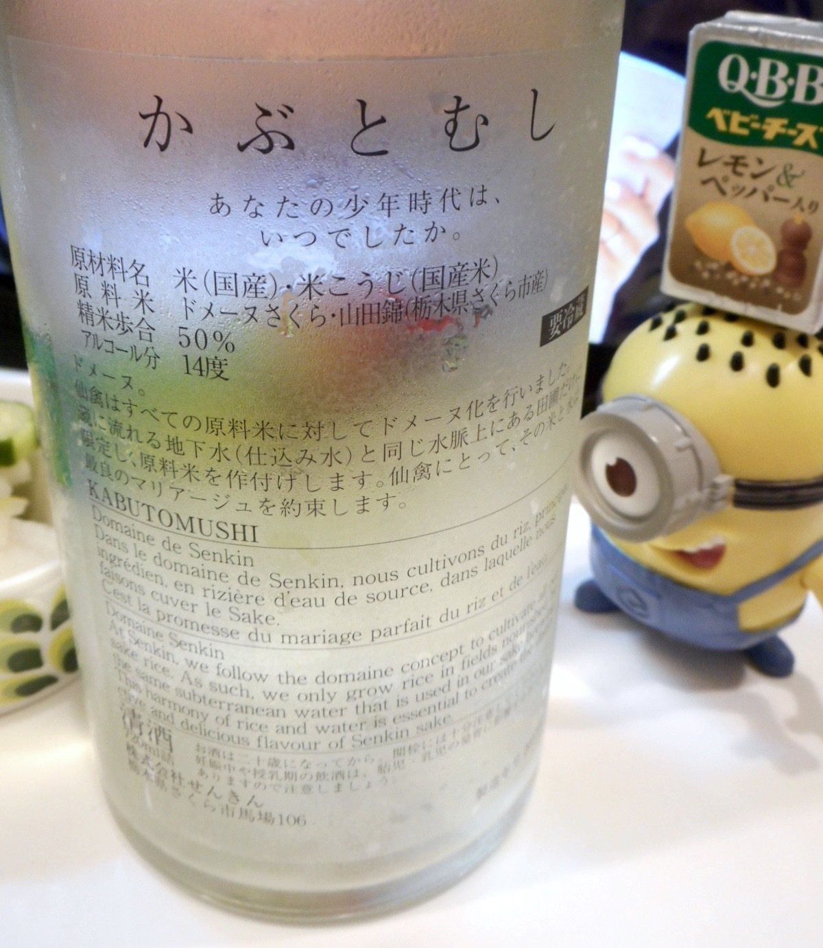 kabutomushi28by2.jpg
