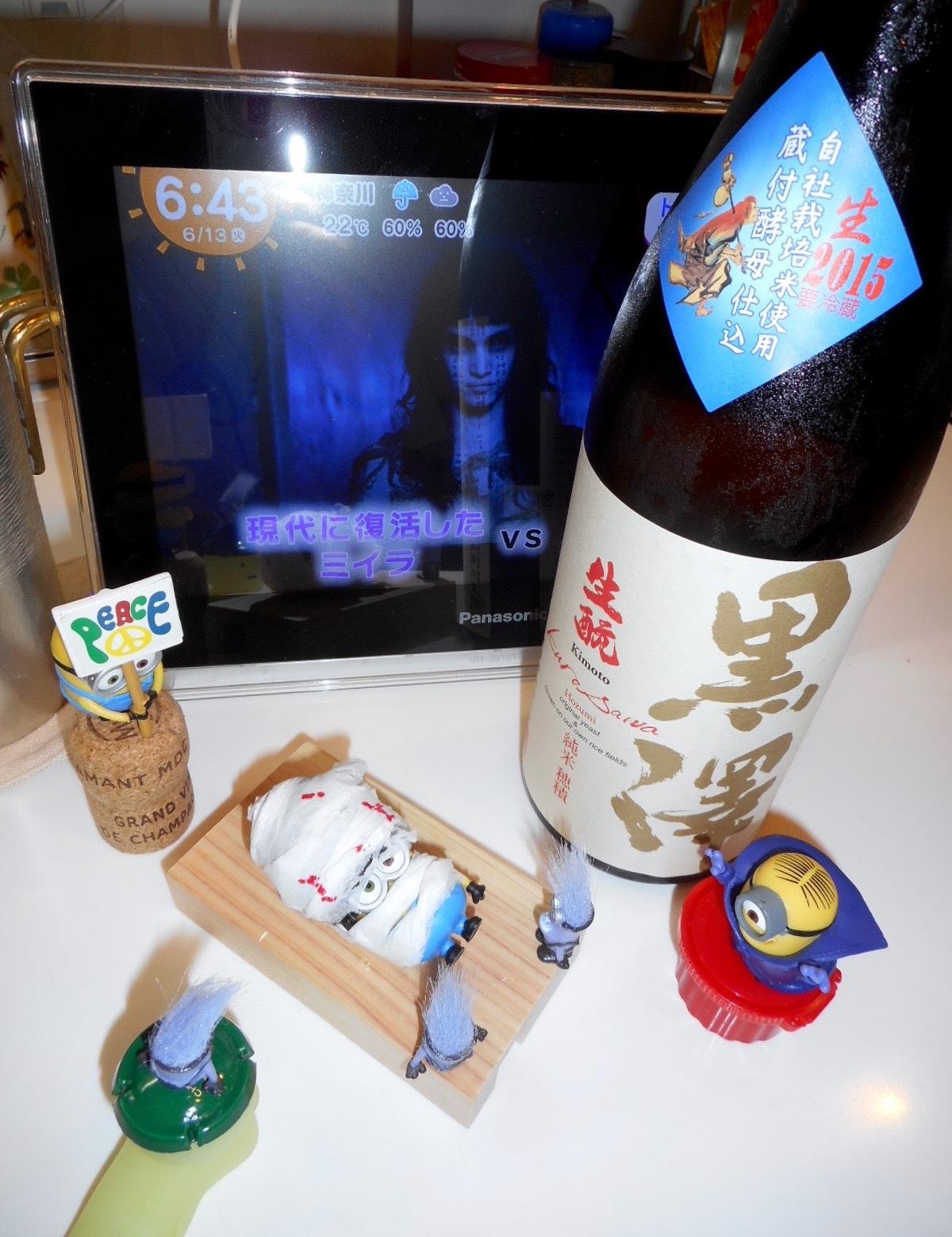 kurosawa_hozumi27by_nama3.jpg