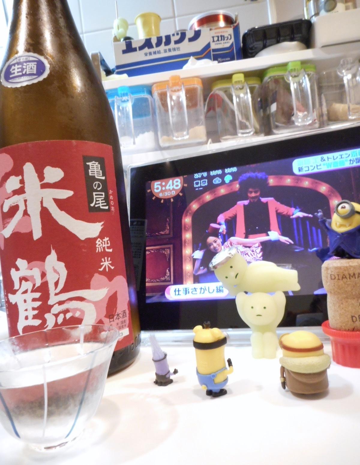 yonetsuru_kamenoo65nama_28by14.jpg