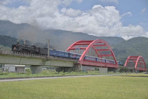 170701tamasato-tori4666.jpg