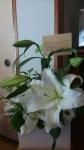 KIMG0073 (004) 吾が次男、雄司の七回忌に寄せられし献花