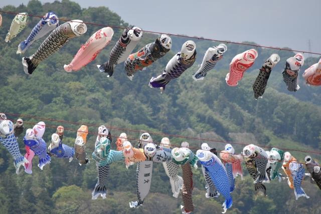 相模川鯉のぼり20170400000005