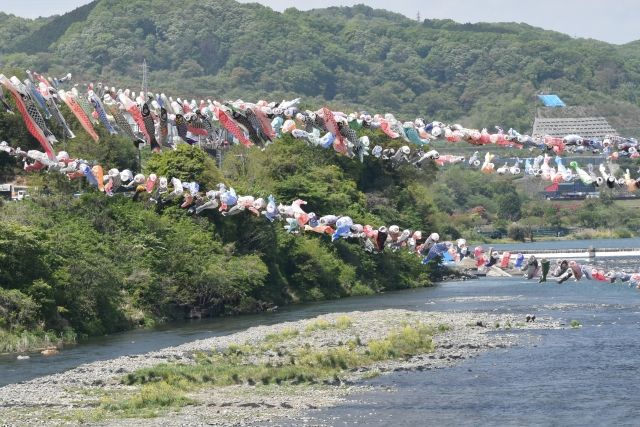 相模川鯉のぼり20170400000007