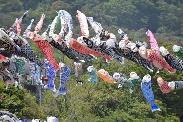 相模川鯉のぼり20170400000010